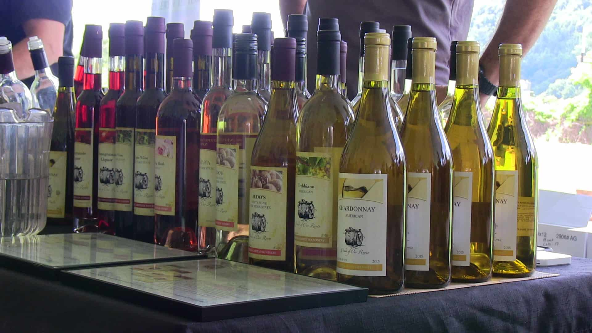 TICKETS ON SALE NOW FOR THE 9TH ANNUAL  PUTNAM COUNTY WINE & FOOD FEST